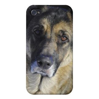 Caso del iPhone 4 del pastor alemán iPhone 4/4S Carcasa