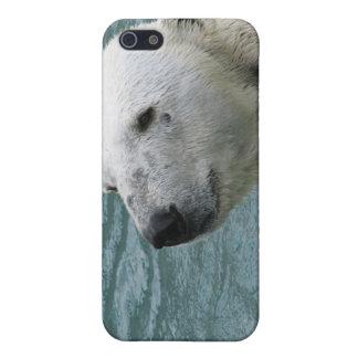 Caso del iPhone 4 del perfil del oso polar iPhone 5 Coberturas