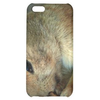 Caso del iPhone 4 del perro de las praderas