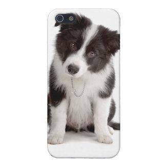 Caso del iPhone 4 del perro de perrito del border iPhone 5 Cárcasas