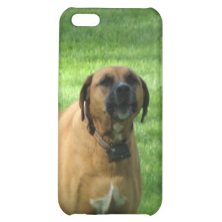 Caso del iPhone 4 del perro del boxeador del desco