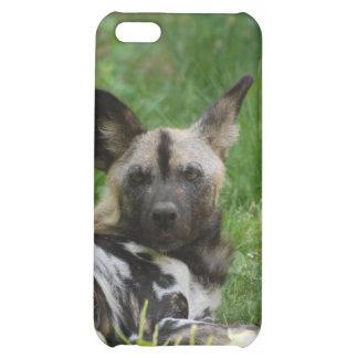 Caso del iPhone 4 del perro salvaje