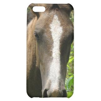 Caso del iPhone 4 del potro del caballo