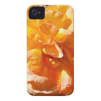 Caso del iPhone 4 del rosa amarillo iPhone 4 Case-Mate Coberturas
