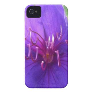 caso del iPhone 4 - flor púrpura Case-Mate iPhone 4 Fundas
