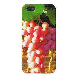 Caso del iPhone 4G de las uvas de California iPhone 5 Carcasa