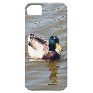 Caso del iPhone 5/5S de Barely There del pato del iPhone 5 Carcasas