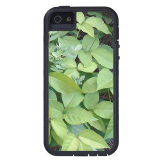 Caso del iPhone 5 5S de la hiedra venenosa