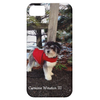 Caso del iPhone 5 5S de Winston III del carmín iPhone 5 Case-Mate Cárcasas