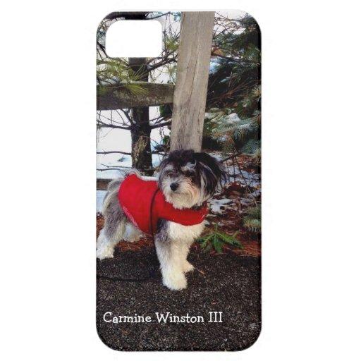 Caso del iPhone 5/5S de Winston III del carmín iPhone 5 Case-Mate Cárcasas