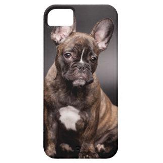 Caso del iPhone 5/5S del dogo francés iPhone 5 Fundas