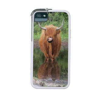 Caso del iPhone 5/5S del injerto de la vaca de la