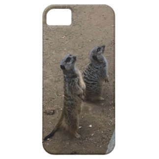 caso del iPhone 5/5S - perros de las praderas iPhone 5 Funda