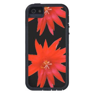 caso del iPhone 5 - cactus de pascua iPhone 5 Carcasas