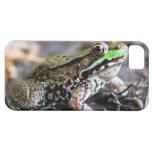 caso del iphone 5 - caso del iphone 5 de la rana iPhone 5 carcasa