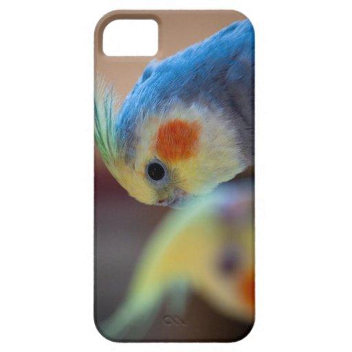 caso del iPhone 5 con dos pájaros iPhone 5 Carcasas