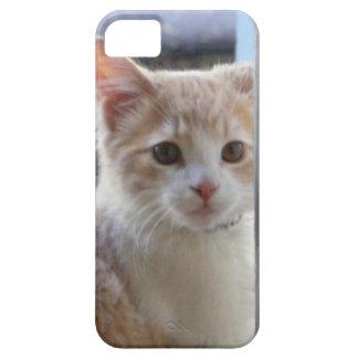 caso del iPhone 5 con el gatito de color claro iPhone 5 Carcasas
