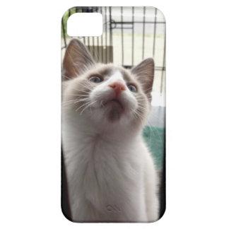 caso del iPhone 5 con el gatito en jaula Funda Para iPhone 5 Barely There