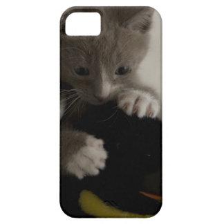 caso del iPhone 5 con el gatito que sostiene el iPhone 5 Fundas