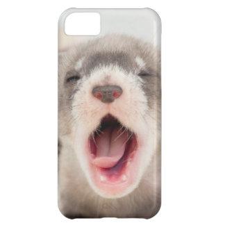 caso del iPhone 5 con el hurón de bostezo del bebé Funda Para iPhone 5C