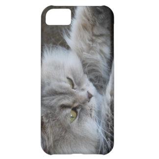 caso del iPhone 5 con la imagen gruñona del gato Carcasa iPhone 5C