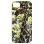 caso del iPhone 5 con la jirafa iPhone 5 Cárcasa