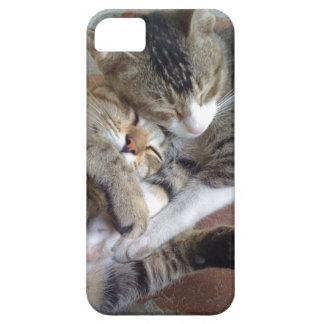 caso del iPhone 5 con los gatitos napping iPhone 5 Carcasas