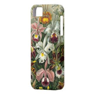 Caso del iPhone 5 de Barely There de las orquídeas iPhone 5 Carcasas