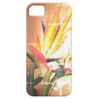 Caso del iphone 5 de la ave del paraíso de la crom iPhone 5 Case-Mate carcasa