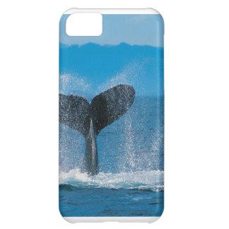 Caso del iphone 5 de la ballena jorobada