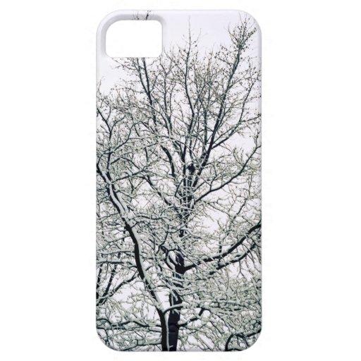 Caso del iPhone 5 de la casamata del árbol del inv iPhone 5 Case-Mate Coberturas