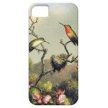 Caso del iPhone 5 de la familia del colibrí y del  iPhone 5 Cobertura