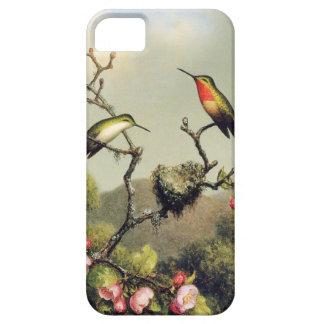 Caso del iPhone 5 de la familia del colibrí y del iPhone 5 Fundas