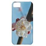 Caso del iPhone 5 de la flor de cerezo