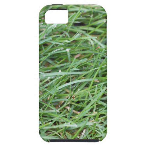 Caso del iPhone 5 de la hierba iPhone 5 Case-Mate Fundas