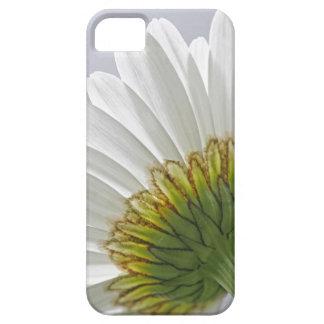 Caso del iPhone 5 de la imagen de la margarita iPhone 5 Case-Mate Coberturas