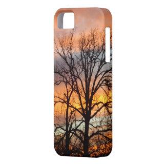 Caso del iPhone 5 de la puesta del sol 1 del iPhone 5 Funda