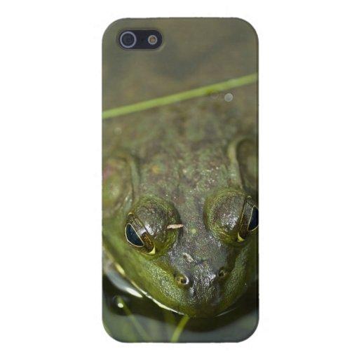Caso del iPhone 5 de la rana mugidora iPhone 5 Carcasa