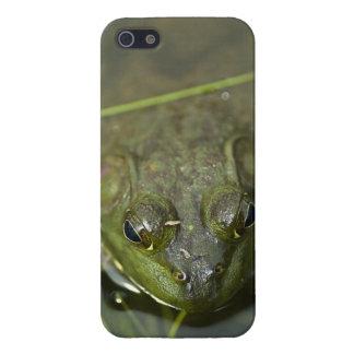 Caso del iPhone 5 de la rana mugidora iPhone 5 Carcasas