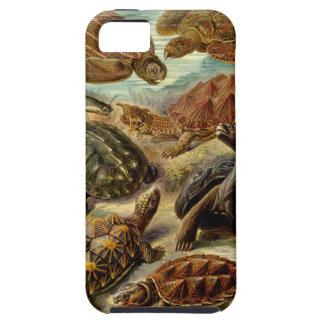 Caso del iPhone 5 de la tortuga Funda Para iPhone SE/5/5s