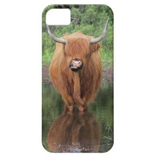 Caso del iPhone 5 de la vaca de la montaña iPhone 5 Protectores