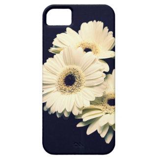 Caso del iPhone 5 de las margaritas de Gerber iPhone 5 Case-Mate Fundas