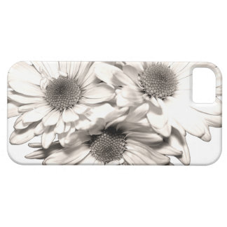 Caso del iPhone 5 de las margaritas iPhone 5 Protector