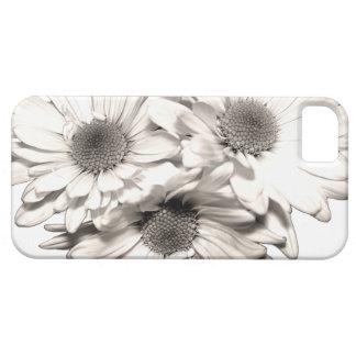Caso del iPhone 5 de las margaritas iPhone 5 Carcasa