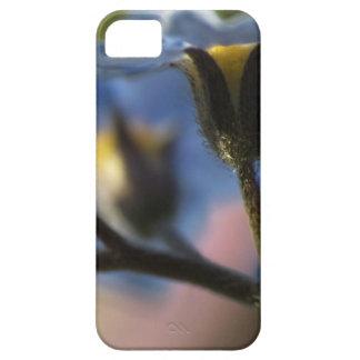 Caso del iPhone 5 de las nomeolvides 4 Funda Para iPhone SE/5/5s