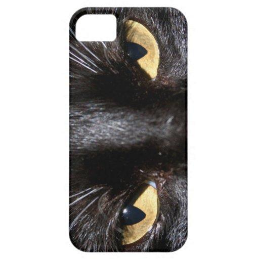 Caso del iPhone 5 de los ojos de gato iPhone 5 Funda