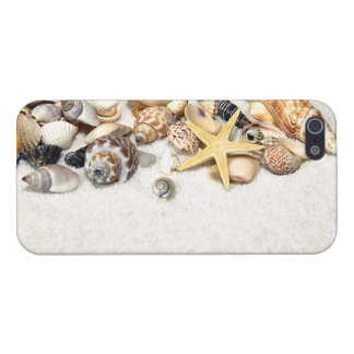 Caso del iPhone 5 de los Seashells iPhone 5 Coberturas
