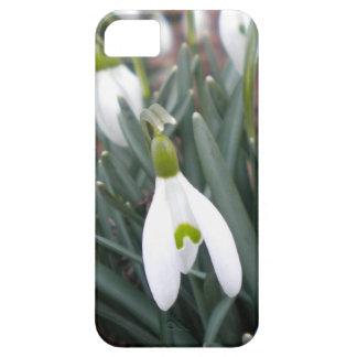 Caso del iPhone 5 de Snowdrop (Galanthus Nivalis) Funda Para iPhone SE/5/5s