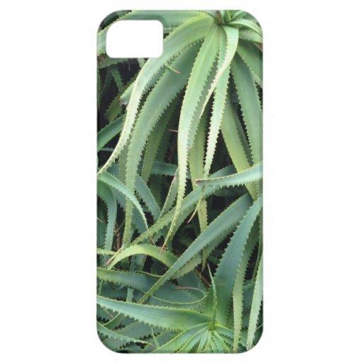 Caso del iPhone 5 de Verde de Meghan Oona iPhone 5 Case-Mate Cárcasa