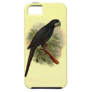 Caso del iPhone 5 del ambiente de Anadorhynchus Funda Para iPhone SE/5/5s